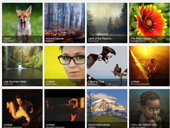 Kategorien-Browsing auf 500px.com
